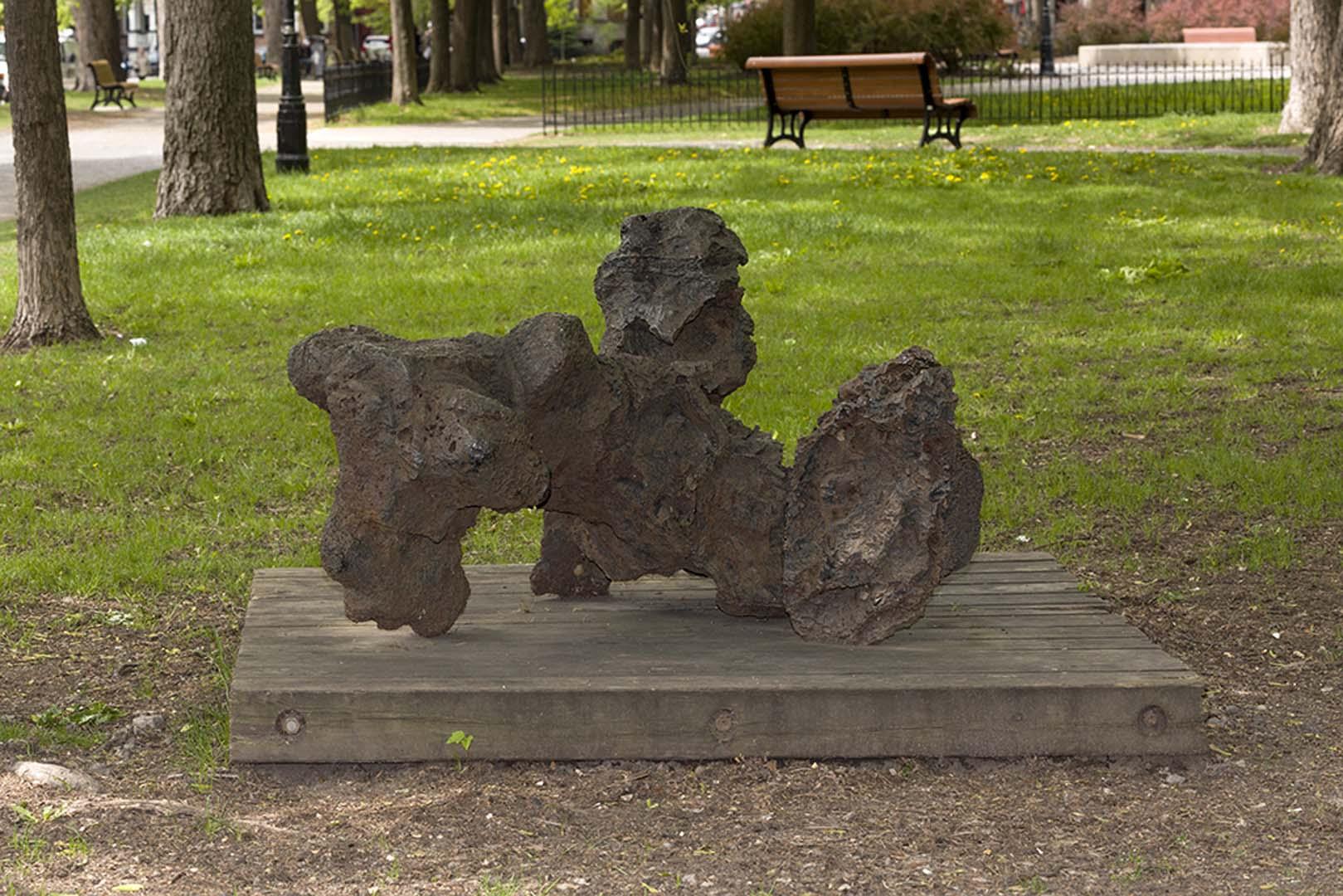 Le chien du Québec, Armand Vaillancourt